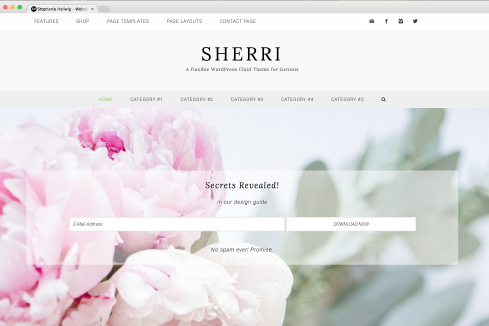 sherri-homepage-portfolio